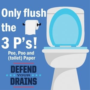 Only Flush the 3P's