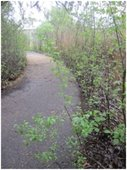 River Walk path