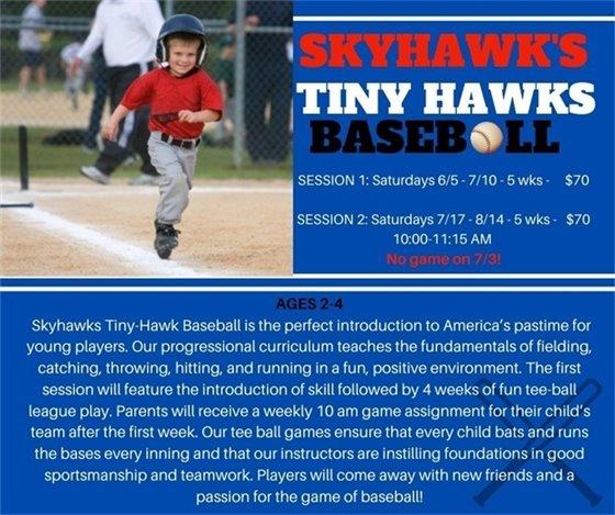 Tiny Hawks Baseball
