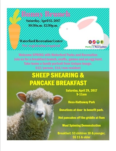 Bunny Brunch and Sheep Shearing Flyer