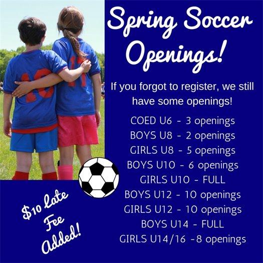 Spring Soccer Openings