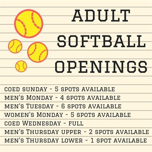 Adult Softball Openings