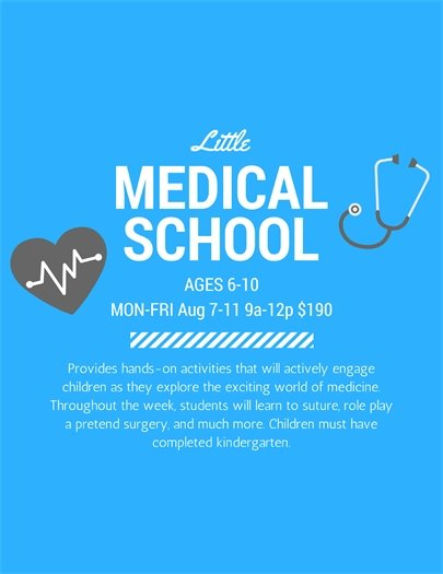 Little Medical School Camp