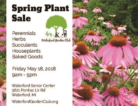 spring plan sale