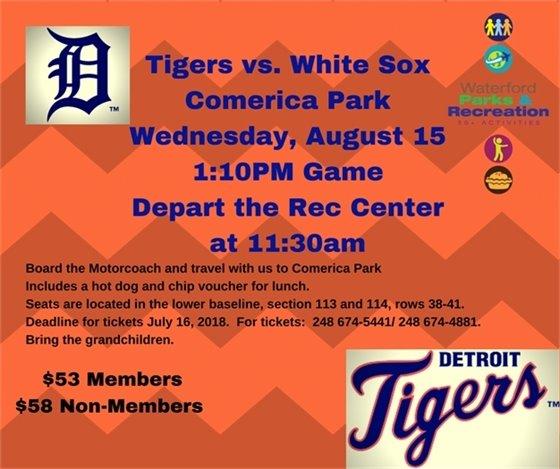 Tiger Baseball August