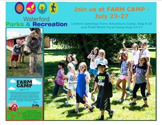 Farm Camp Last 3 Sessions