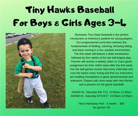 Tiny Hawks Baseballl
