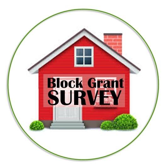 Block Grant Survey