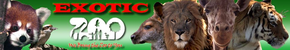 Exotic Zoo Logo