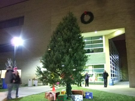 A large Christmas tree outside a building